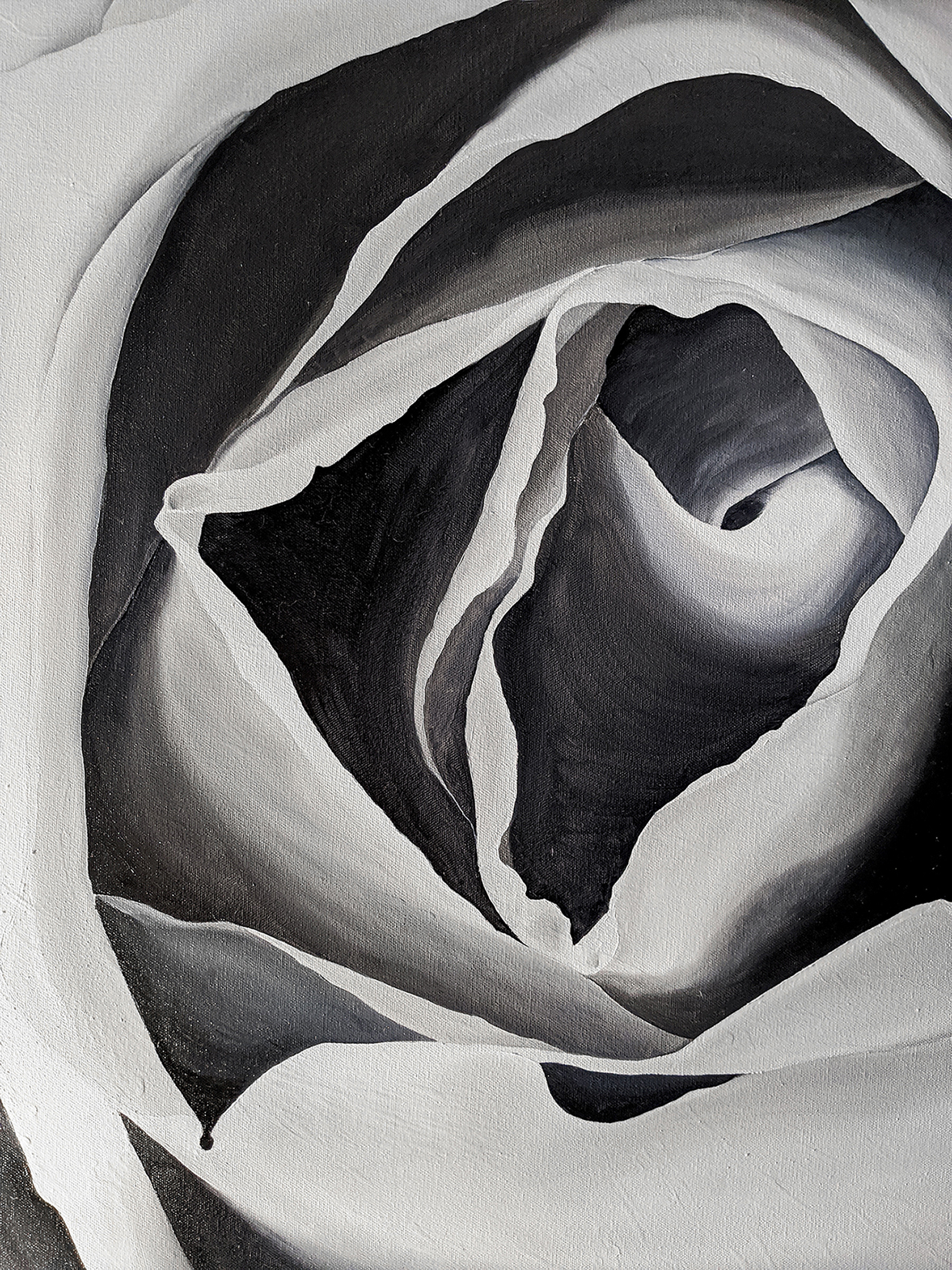 Close-up Rose Painting